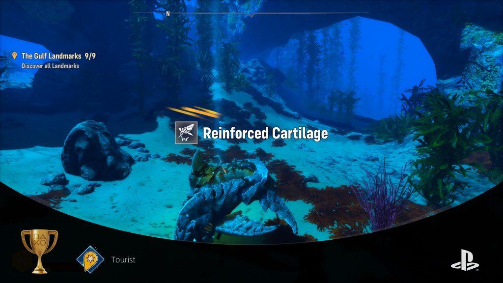 Reinforced